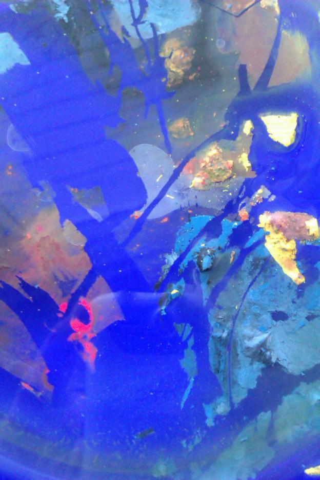 Glass maleri 2013